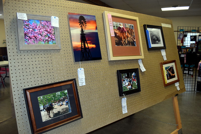 Photography pieces hang on display in the Gary DeSoto Building Thursday, Aug. 4, 2016, at the Logan County Fair.