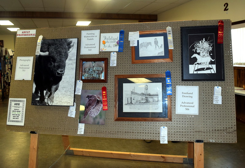 A variety of artwork hangs on display in the Gary DeSoto Building Thursday, Aug. 4, 2016, at the Logan County Fair.