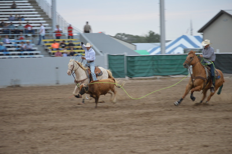 Travis Bounds, right,starts turning the steer while Jesse Sheffield lines up for the heels during team roping Thursday night during the Dick Stull Memorial PRCA Rodeo. The pair turned in a time of 5.2 seconds, best of the performance.