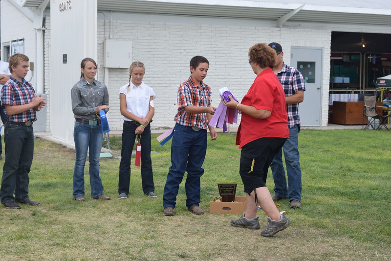 From left; Charles Fehringer, Faith Gettman, Starla Van Wyk and Bodey MacIsaac, competitors in the intermediate division, receive ribbons during the Junior Dog Show Friday, Aug. 5, 2016, at the Logan County Fair.