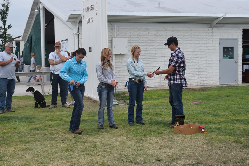From left; Emily Lovell, Jamie Kielian and Morgan Cockroft, competitors in the senior division, receive ribbons during the Junior Dog Show Friday, Aug. 5, 2016, at the Logan County Fair.