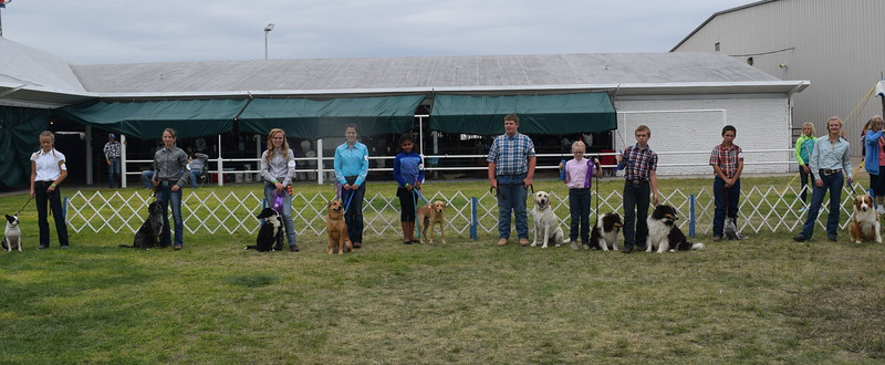The competitors in the Logan County Fair Junior Dog Show pose for a photo with their animals following the show Friday, Aug. 5, 2016. From left; From left; Starla Van Wyk, Faith Gettman, Jamie Kielian, Emily Lovell, Jasmine Martinez, Nathan Brekel, Sadie Fehringer, Charles Fehringer, Bodey MacIsaac and Morgan Cockroft.