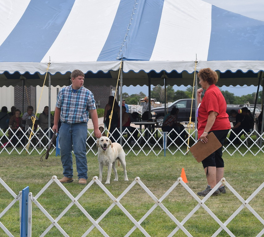 Nathan Brekel, a competitor in the intermediate division, holds tight to his dog as the judge looks it over during the Junior Dog Show Friday, Aug. 5, 2016, at the Logan County Fair.