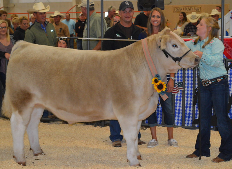 DSC_0169.JPG Grand Champion Market Beef, shown by Kinlie Lewis, $6,750 paid by Inco Digestive