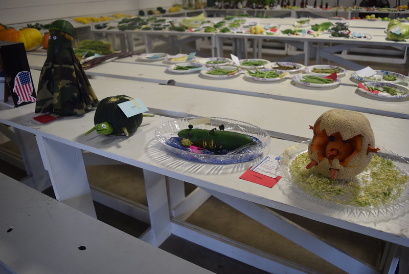 A variety of vegetable decorations were on display underneath the grandstands Saturday, Aug. 6, 2016, at the Logan County Fair.