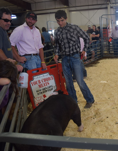 Senior showman Tyler Gentry moves his pig around the pen during the Round Robin Showmanship Contest Friday, Aug. 5, 2016, at the Logan County Fair.