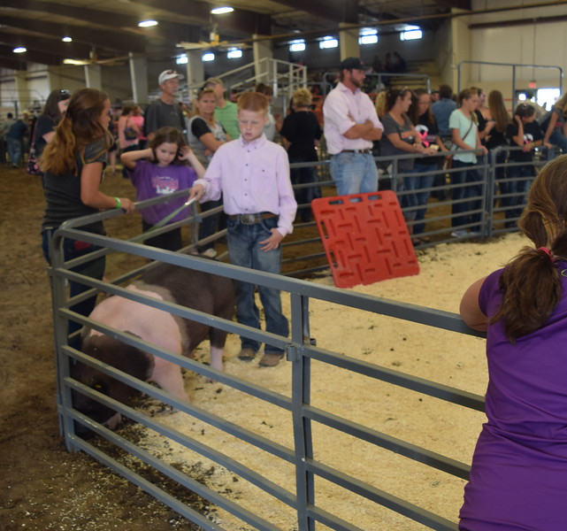 Junior showman Colton Hadeen moves his pig around the pen during the Round Robin Showmanship Contest Friday, Aug. 5, 2016, at the Logan County Fair.