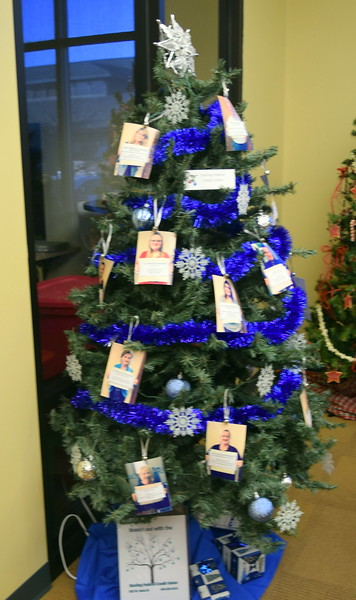 Sterling Federal Credit Union's tree at Sterling Public Library's 2017 Parade of Trees.