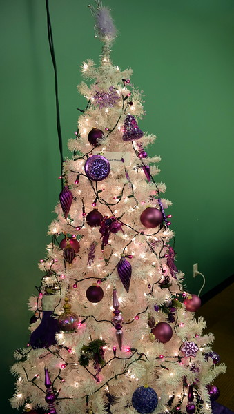 Gail Schaefer's tree at Sterling Public Library's 2017 Parade of Trees.