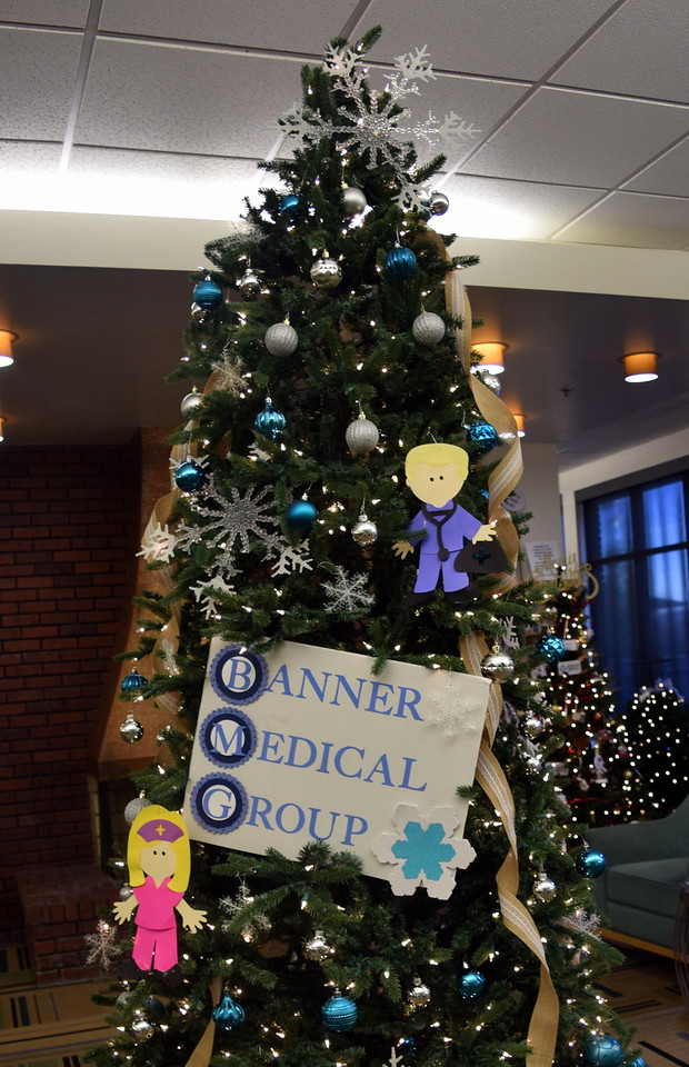 Banner Medical Group's tree at Sterling Public Library's 2017 Parade of Trees.