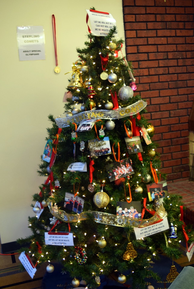 Sterling Comets Special Olympics' tree at Sterling Public Library's 2017 Parade of Trees.