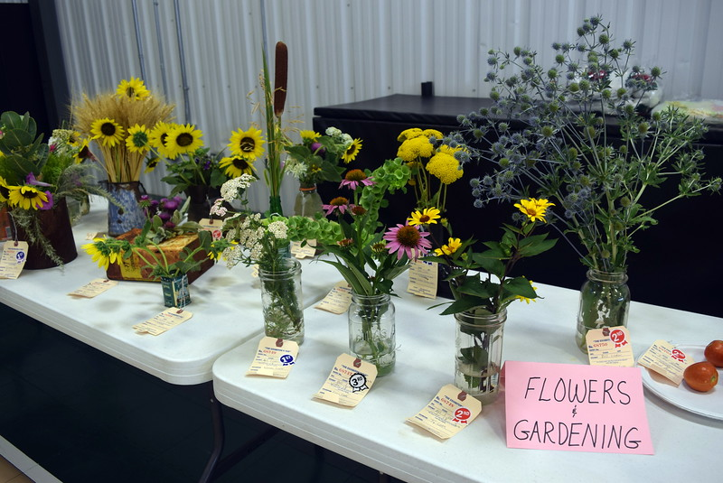Beautiful flowers were on display at the Crook Community Center during the Crook Fair Saturday, Juy 29, 2017.