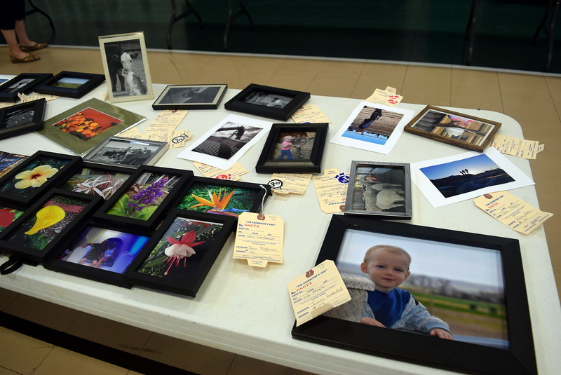 Photography skills were on display as part of the exhibits in the Crook Community Center during the Crook Fair Saturday, July 29, 2017.
