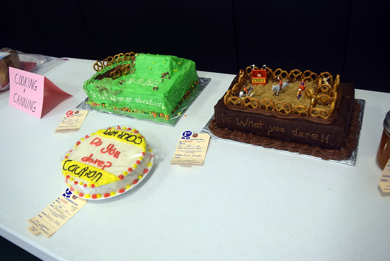 Several cakes were on display as part of the exhibits at Crook Community Center during the Crook Fair Saturday, July 29, 2017.