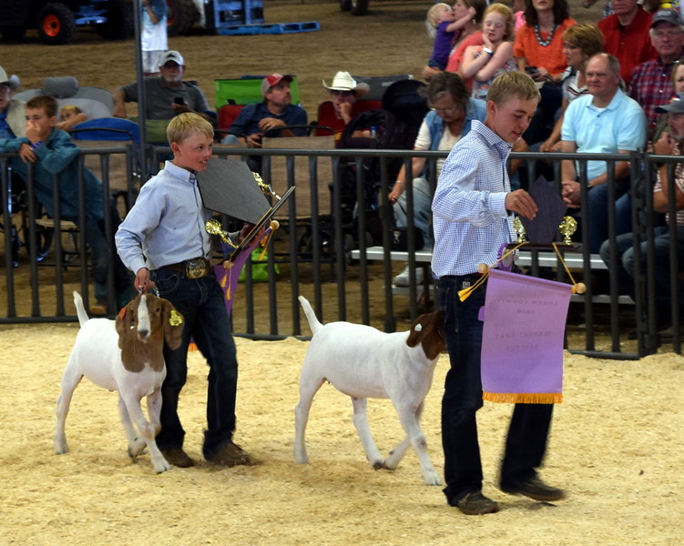 Beau Carlson, left, and Cooper Carlson make their way out of the ring with their animals after being named champion and reserve champion market goat at the Junior Goat Show Wednesday, Aug. 8, 2018, at the Logan County Fair.