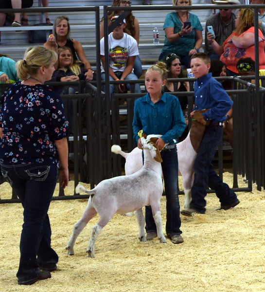 Judge Casseday Marshall talks with the top junior showman competitors at the Logan County Fair Junior Goat Show Wednesday, Aug. 8, 2018. Molly Walker was named the grand champion and Ben Walker was the reserve champion.