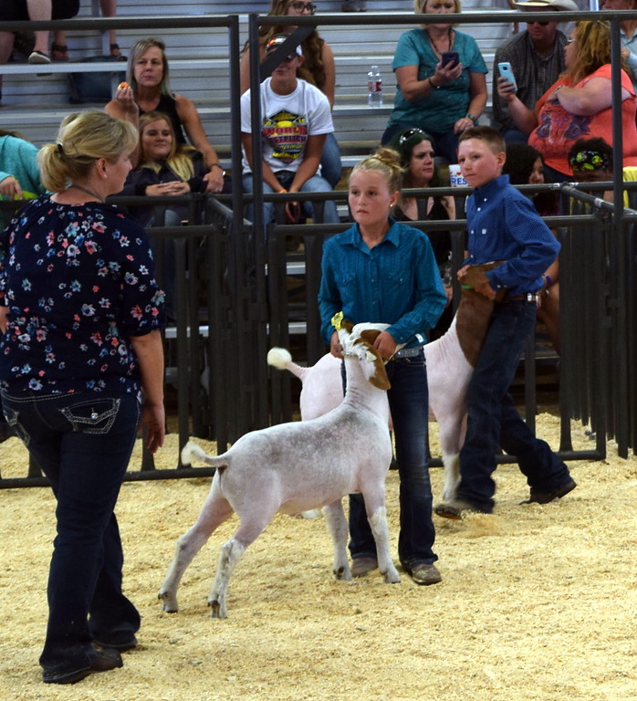 . Judge Casseday Marshall talks with the top junior showman competitors at the Logan County Fair Junior Goat Show Wednesday, Aug. 8, 2018. Molly Walker was named the grand champion and Ben Walker was the reserve champion.