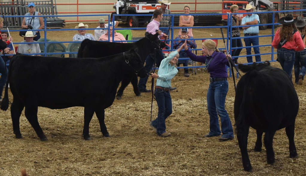 . Sisters Kinlie and Hallie Lewis congratulate each other after being named the Grand and Reserve Champion Breeding Beef award winners at the Logan County Fair Junior Beef Show Friday, Aug. 10, 2018.