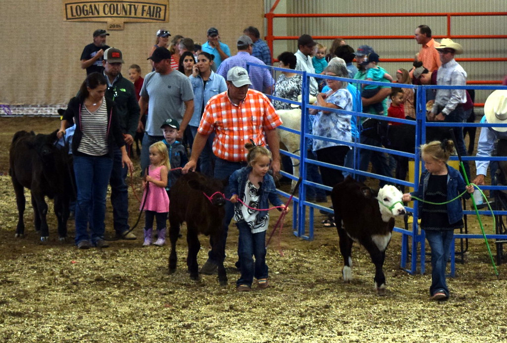 . The Ed and Hazel Korrey Memorial  Bucket Calf Show took place Friday, Aug. 10, 2018, at the Logan County Fair.