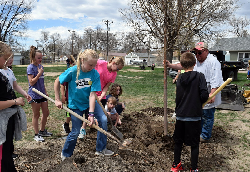 Merino Elementary fifth graders help city parks crew members plant a tree at Monahan Park during the city of Sterling's annual Arbor Day celebration Friday, April 26, 2019.
