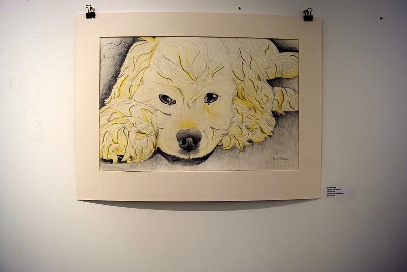 """A pencil and colored pencils sketch, """"Favorite Pup,"""" created by Fleming High School student Seo Hee Hong was among the pieces on display at Northeastern Junior College's annual High Plains Secondary School Art Exhibit held in April."""
