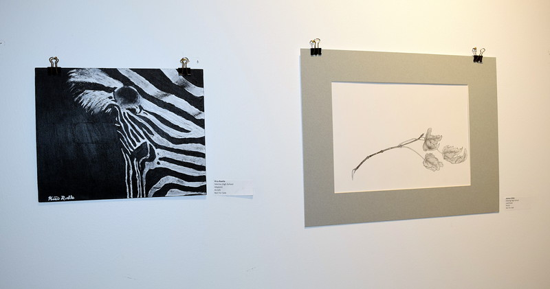 """An acrylic piece, """"Majestic,"""" left, created by Merino High School student Kira Roelle and pencil piece, """"Leaft Study"""" created by Fleming High School student Ashton Gibbs were among the artwork on display at Northeastern Junior College's annual High Plains Secondary School Art Exhibit held in April."""