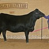Kinlie_Lewis_Grand_Champion_Breeding_Beef