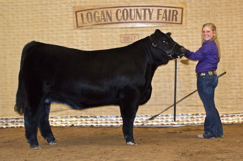 Kinlie_Lewis_Grand_Champion_Market_Heifer