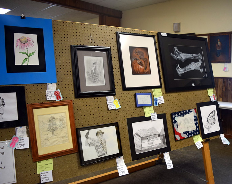 A variety of 4-H and open class photography and fine arts projects were on display in the Gary DeSoto Building Friday, Aug. 11, 2017, at the Logan County Fair.
