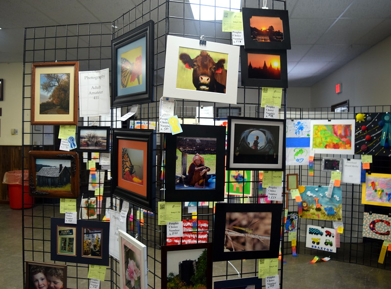 A variety of photographs and artwork was on display in the Gary DeSoto Building Friday, Aug. 11, 2017, at the Logan County Fair.