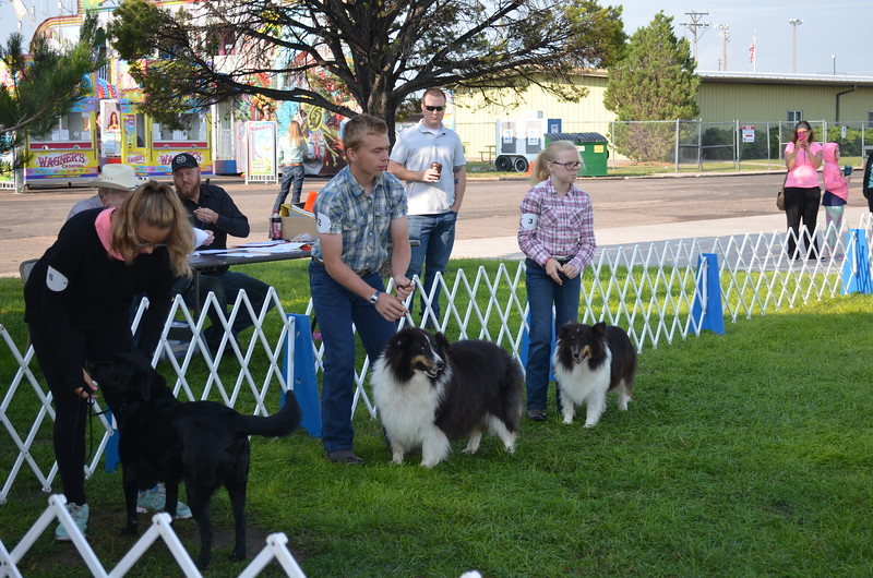 Dog_Show_Exhibitors_02