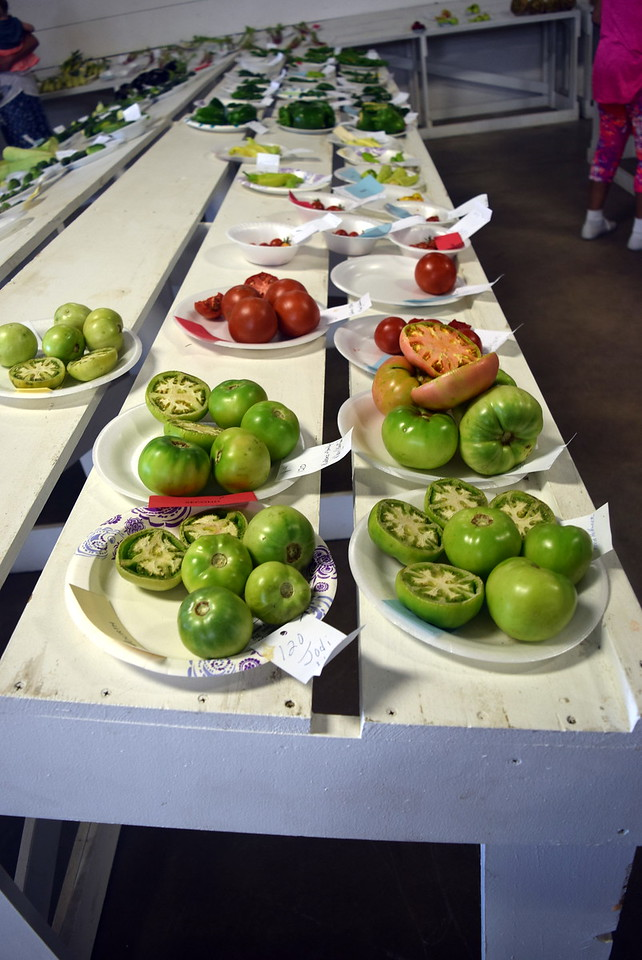A variety of vegetables were on display at the Logan County Fair Saturday, Aug. 12, 2017.