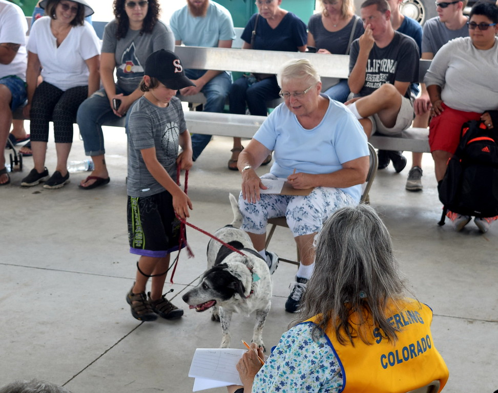 "Sterling Lions Club's Friendly Dog ""Tail Wagging"" Contest Saturday, Aug. 12, 2017, at the Logan County Fair."