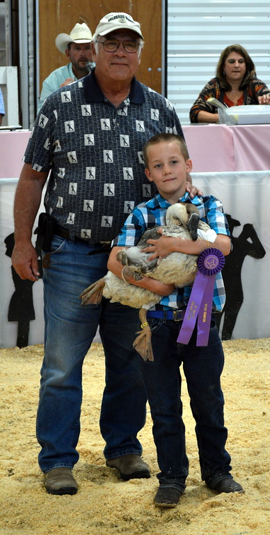 . Calden Bruns, Grand Champion Goose, purchased by North Star Bank Gary Nichols