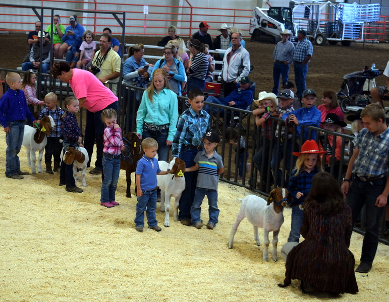 Youngsters take turns talking about their goats during the Tiny Tots Goat Show Wednesday, Aug. 9, 2017, at the Logan County Fair.