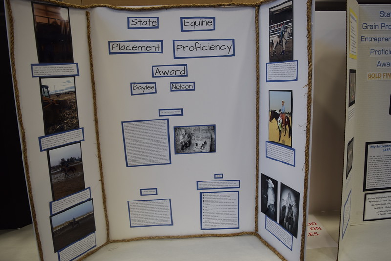 Baylee Nelson, of the Merino FFA chapter, was the state proficiency award winner in equine science placement for her Supervised Agricultural Experience (SAE) project. Her project was one of several on display at an SAE Career Fair at the Colorado FFA State Convention Wednesday, June 8, 2016.