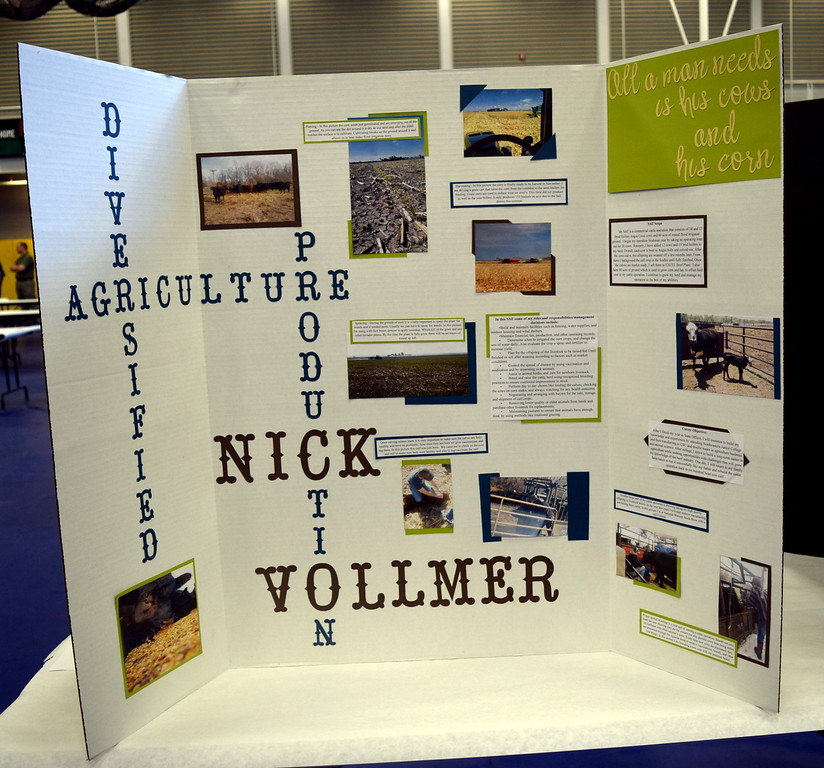 Nick Vollmer, of the Merino FFA chapter, was the state proficiency award winner in diversified agricultre production for his Supervised Agricultural Experience (SAE) project. His project was one of several on display at an SAE Career Fair at the Colorado FFA State Convention Wednesday, June 8, 2016.