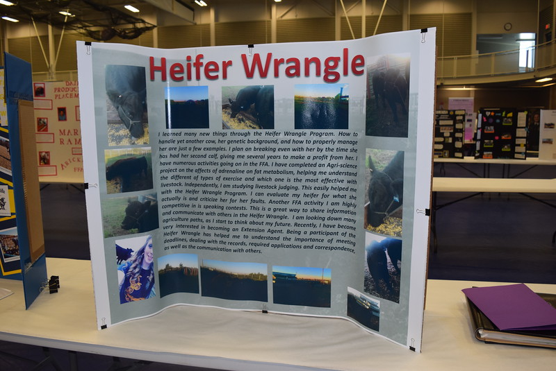 Students Heifer Wrangle projects were on display at the SAE Career Fair that was part of the Colorado FFA State Convention Wednesday, June 8, 2016.