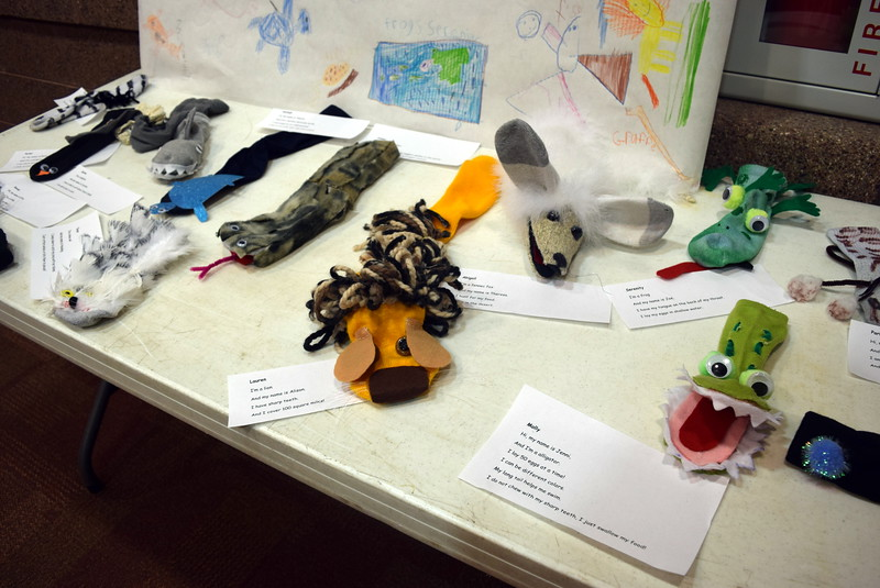 Kindergarteners explored zoology by making different animal sock puppets, which were on display at Merino Elementary and High School's Walking Dinner Thursday, April 28, 2016.