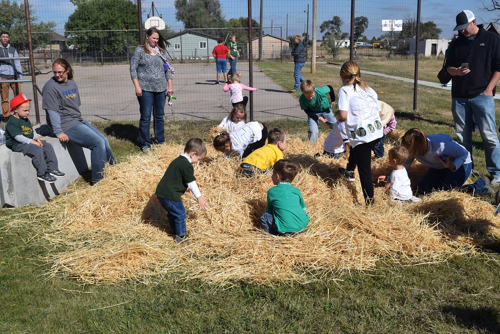 """. Youngsters search for coins among the hay at Peetz Sake Days \""""Still on the Hill\"""" Centennial Celebration Saturday, Sept. 30, 2017."""