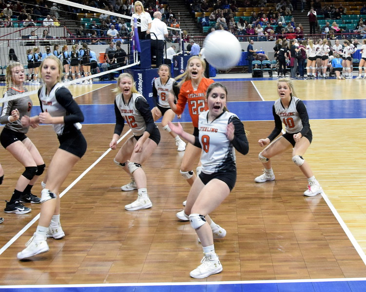 The Sterling Tigers react to a ball hit out of bounds during pool play on Saturday at the Denver Coliseum.
