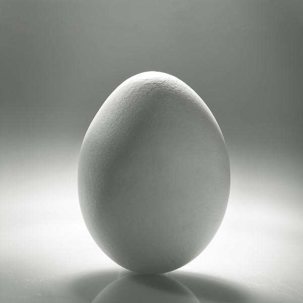 White egg over desk with reflection and shadow