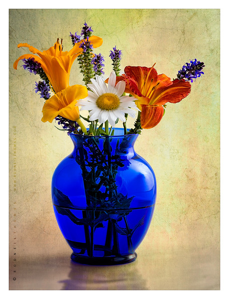 THE  BLUE  VASE