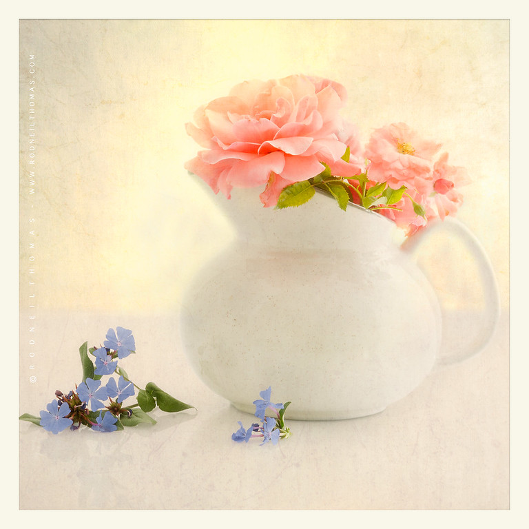 A  PITCHER  OF  FLOWERS
