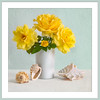 Yellow Roses and Sea Shells
