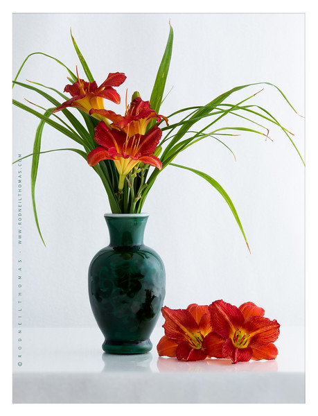 DAYLILIES  IN  VASE