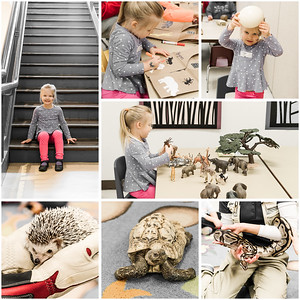 Safari Animals Zoo Class - Jan 2016