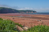 View along the Bay of Fundy shore at Spicers Cove on the edge of Cape Chignecto Provincial Park