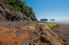 A walking tour at Wasson Bluff near Parrsboro where the remains of a dinosaur are being uncovered by a group of geologists from the Fundy Geological Centre