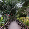 Footbridge in park, Laos,